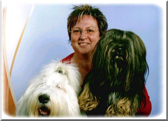 Lhasa Apso - Tibetische Kleinhunde